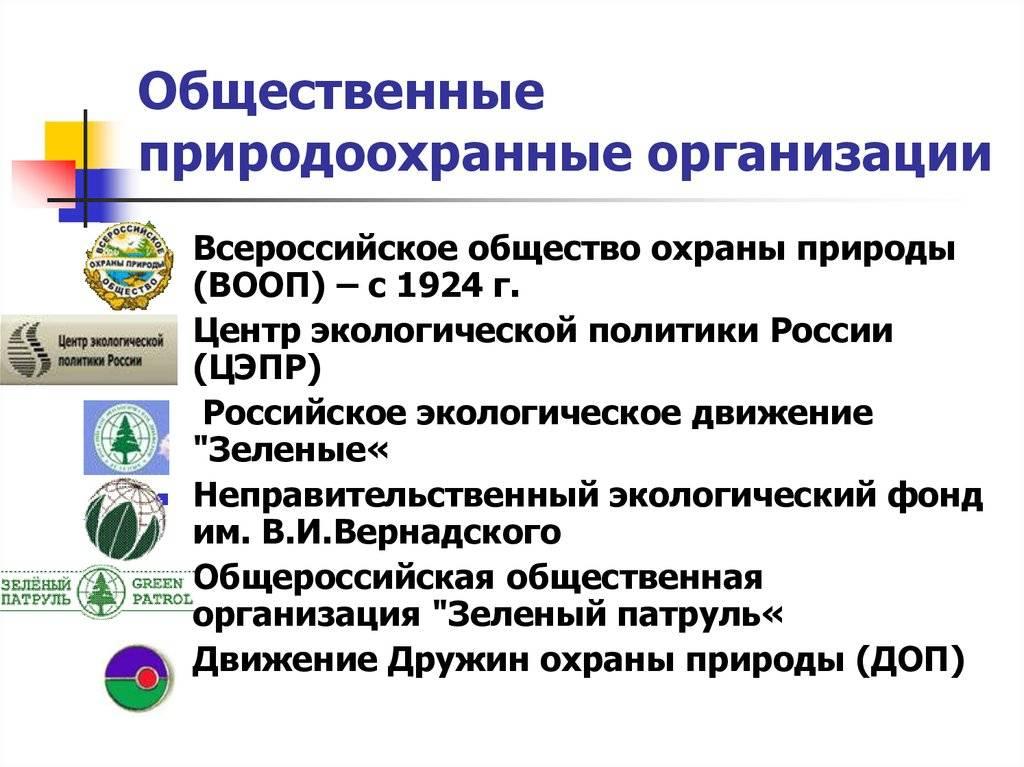 Природоохранные организации рф. в чем заключается работа экологических организаций в россии какие есть организации по охране природы