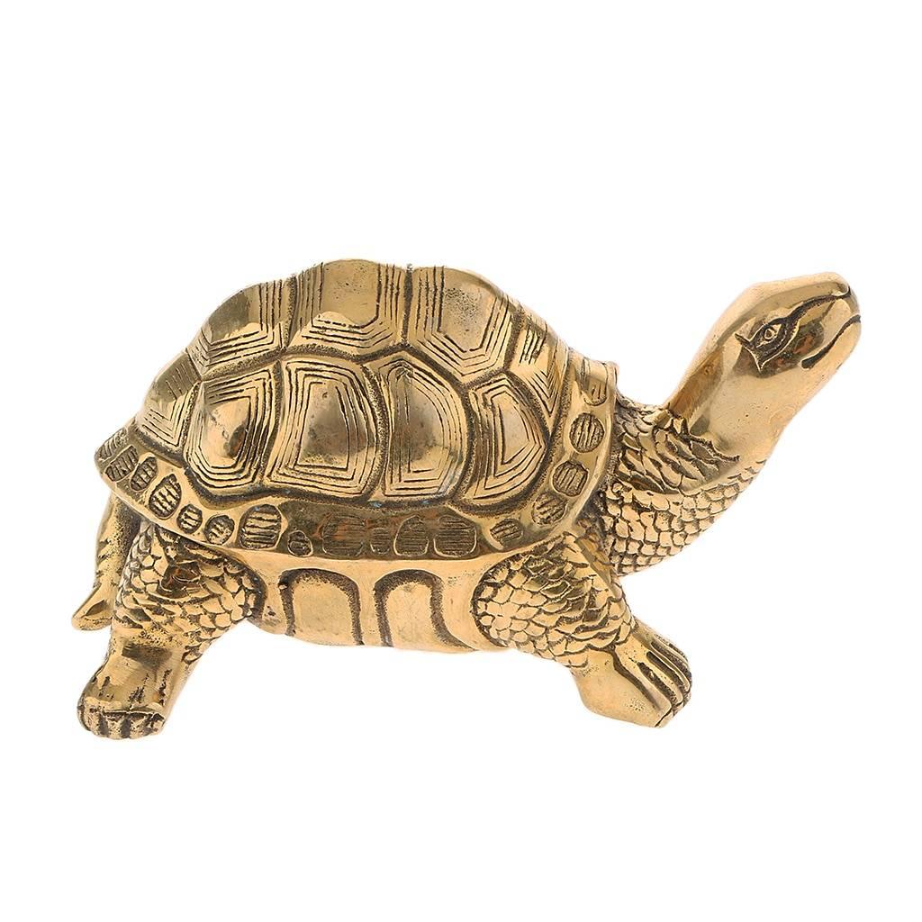 Фэншуй черепаха - бесплатные статьи по магии дом солнца