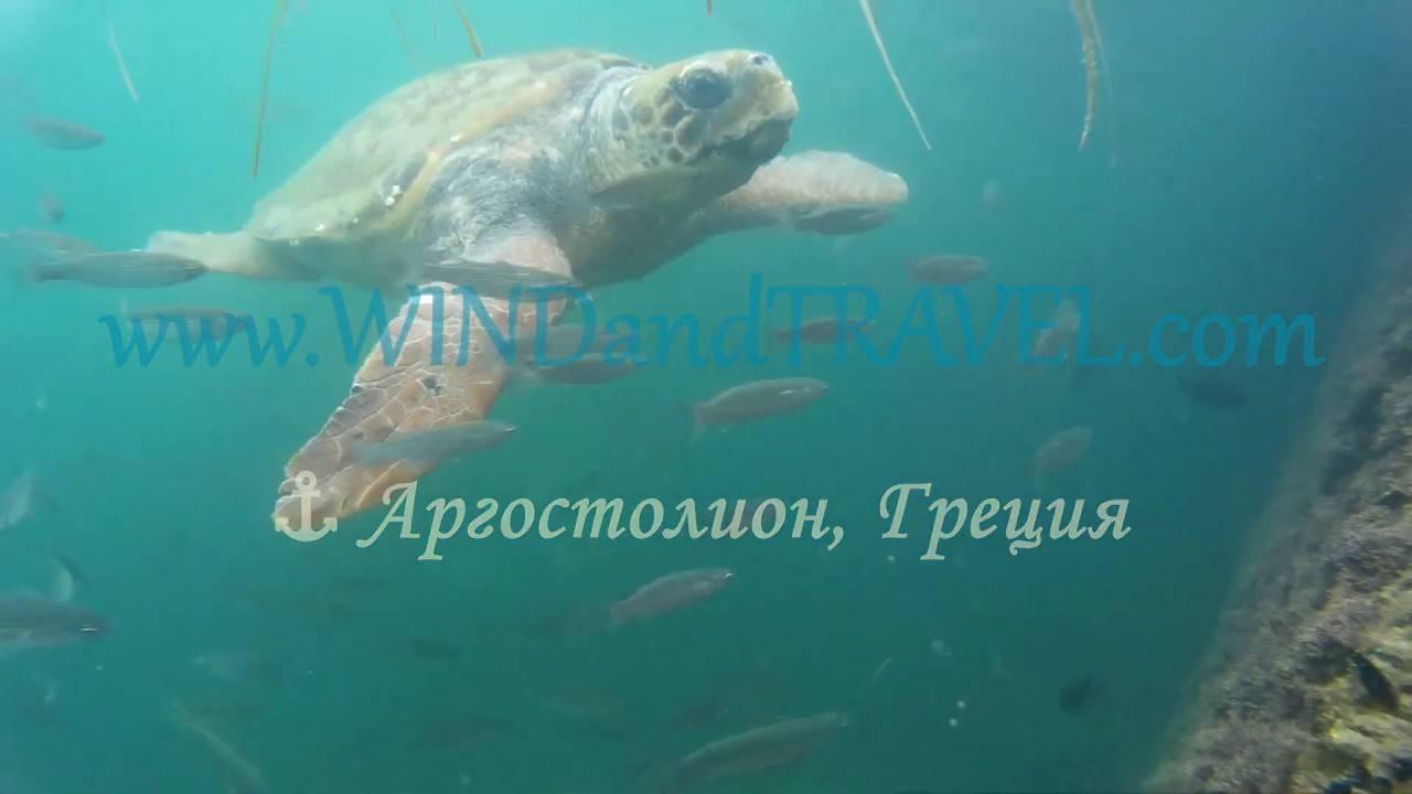 Туры.ru