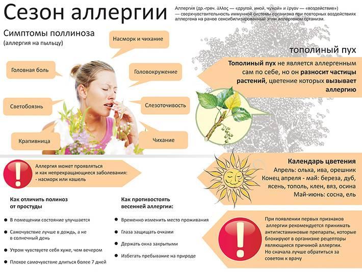 Аллергия на сухопутную черепаху - симптомы и лечение
