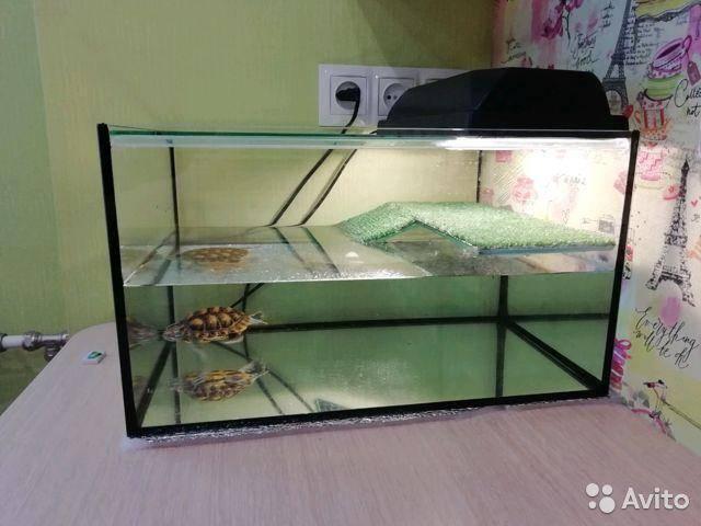 Островок (бережок, суша, плотик) и мостик в аквариум для черепахи своими руками