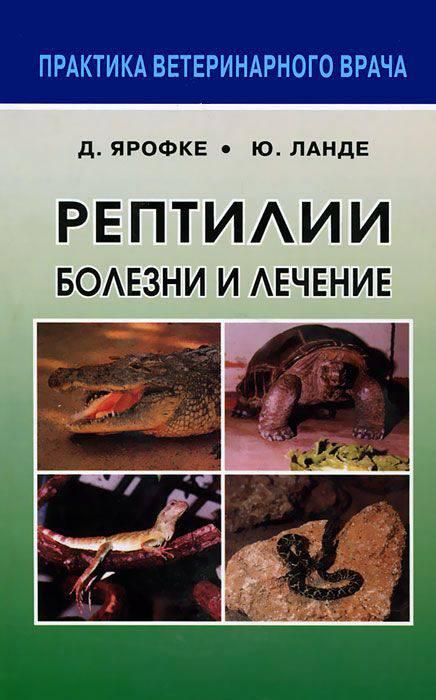 Лечение рептилий: черепах, ящериц, игуан, змей