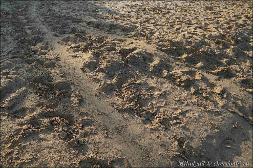 Кефалония, греция – отдых на острове, пляжи и погода