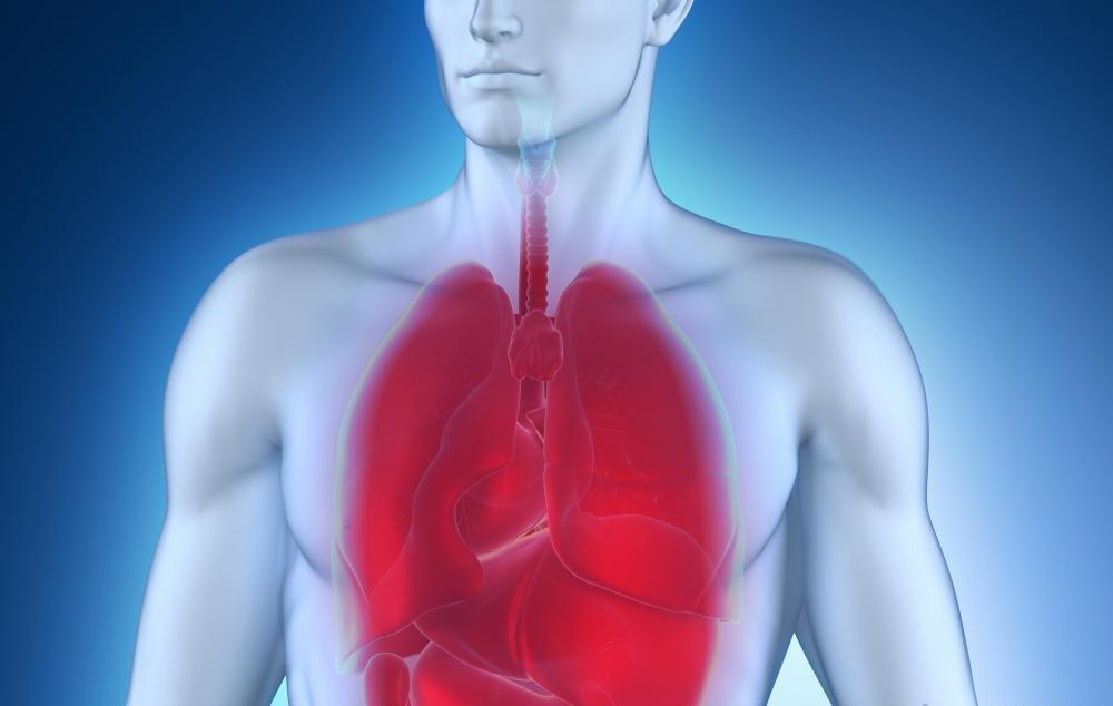 Пневмония — что это такое, причины, признаки, симптомы у взрослых и лечение пневмонии