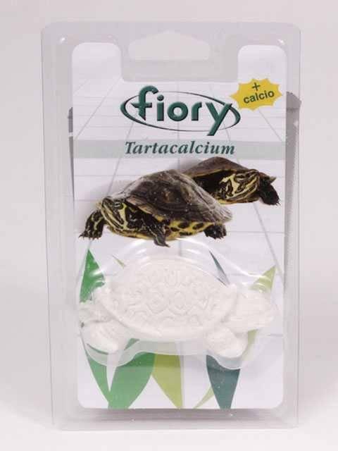 Чем кормить болотных черепах