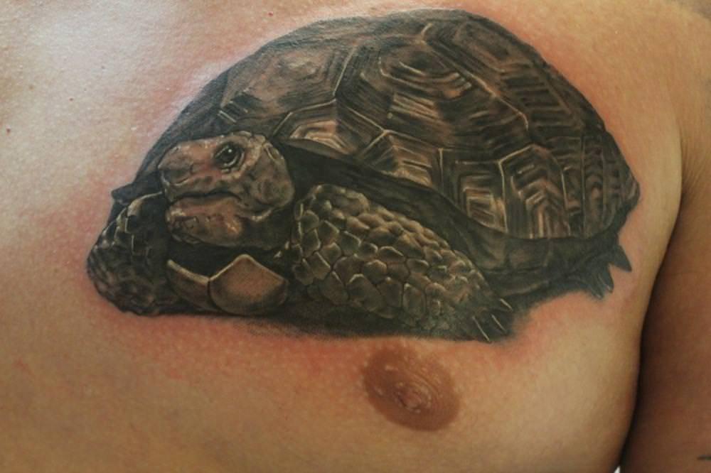 Значение тату черепаха (традиции и современность) и лучшие места для нанесения