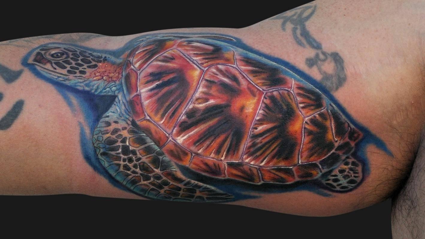 Черепаха – значение в символике