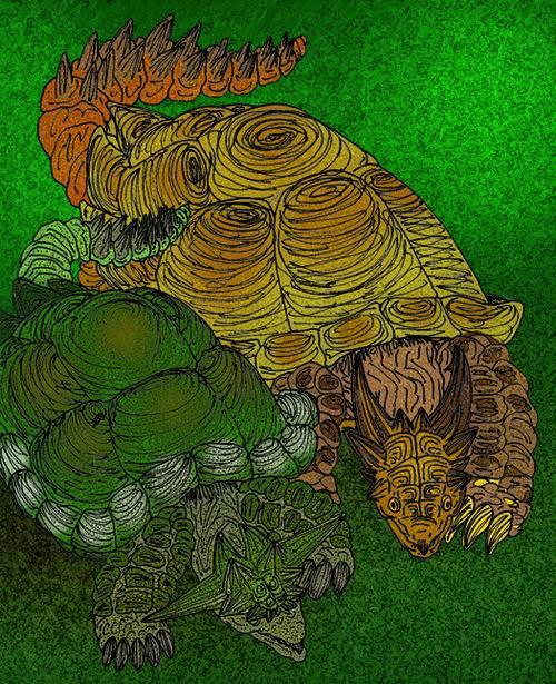 Heosemys spinosa (колючая черепаха) - черепахи.ру - все о черепахах и для черепах