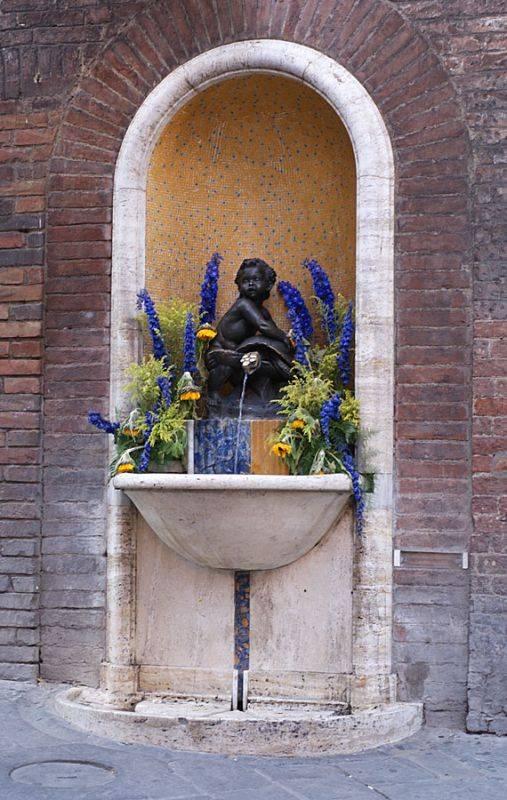Разнообразие флоры и фауны италии