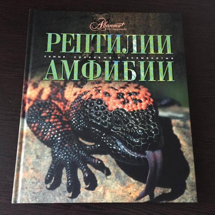 Архив рубрики: рептилии и амфибии