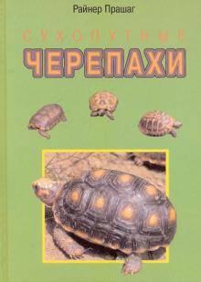 Что нужно знать при покупке черепахи