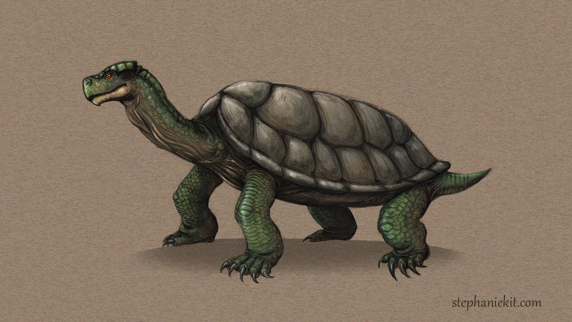 Carbonemys - official ark: survival evolved wiki