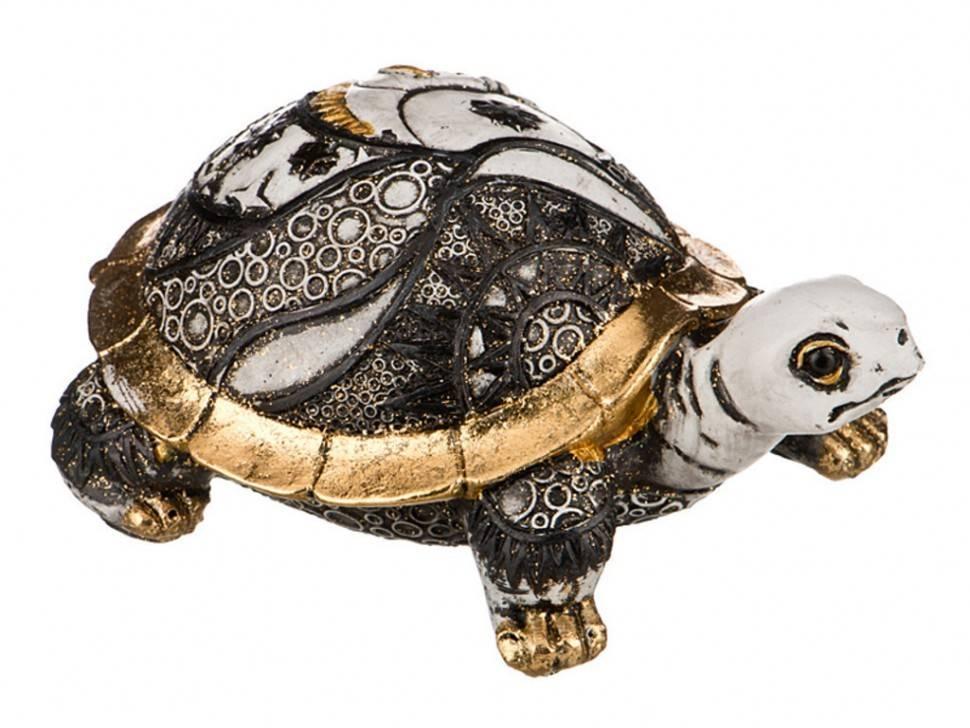 Heosemys spinosa (колючая черепаха)