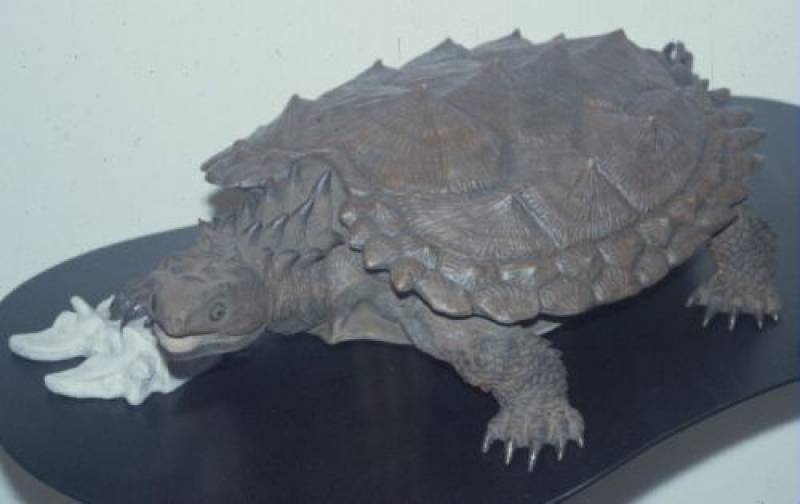 Proganochelys википедия