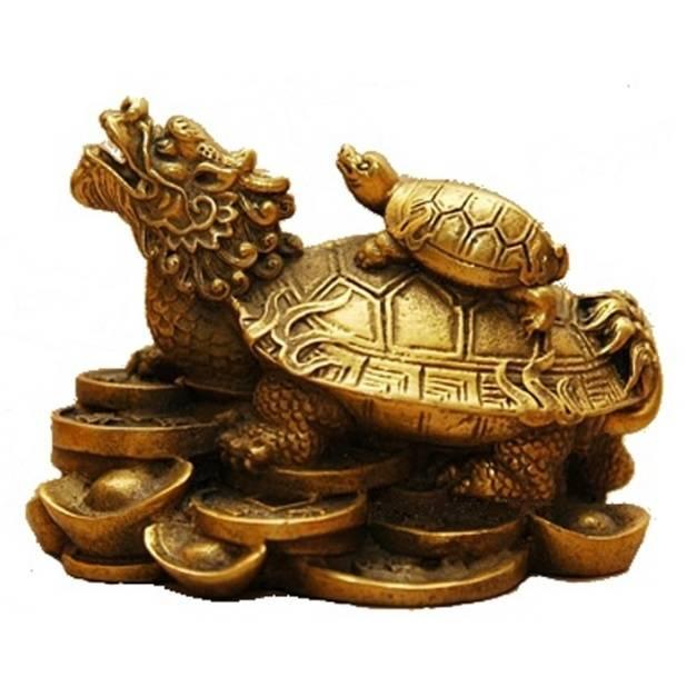 Значение талисмана черепаха в культуре, магии и эзотерике