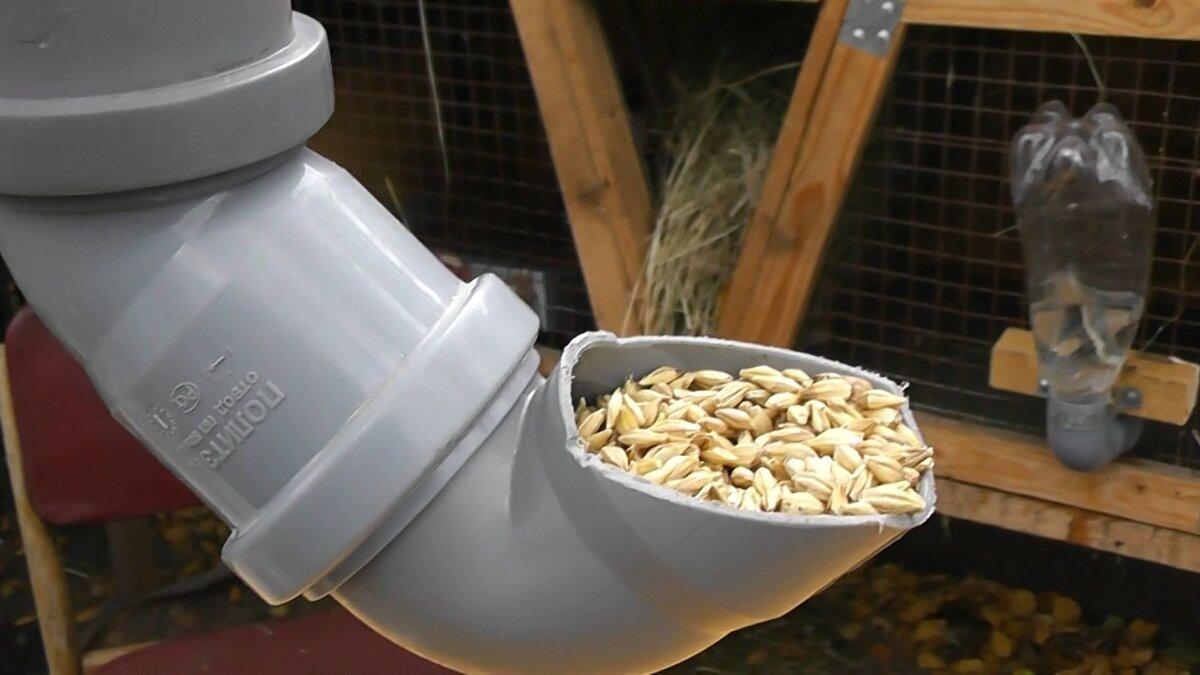 Автоматические кормушки для кур – находка для заводчиков