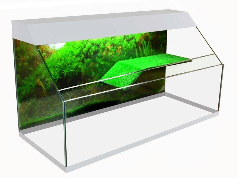 Как правильно обустроить аквариум для красноухих черепах