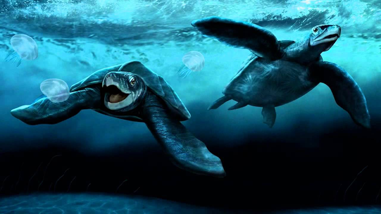 10 вымерших морских чудовищ, населявших наши доисторические моря
