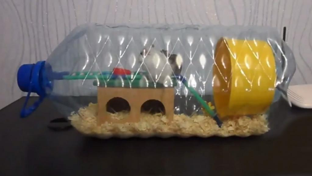 Как сделать игрушки для хомяка своими руками?