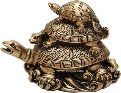 Значение черепахи: что символизируют талисманы и украшения с черепахой? что фигурки черепахи означают по фэншуй?