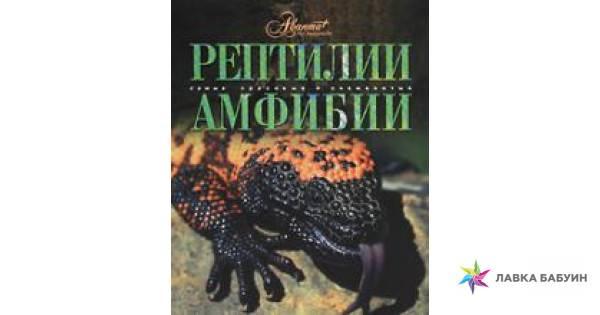Глава тринадцатая. амфибии и рептилии