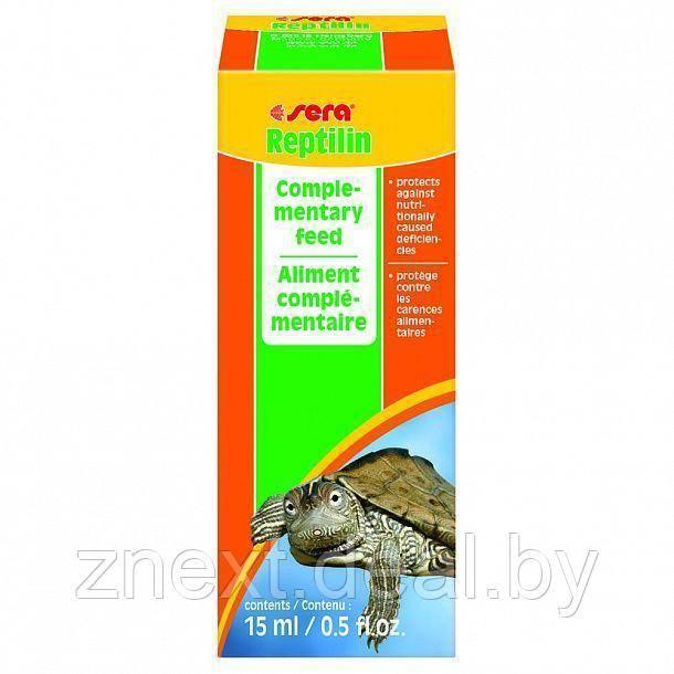 Съедобные травы и овощи для сухопутных черепах