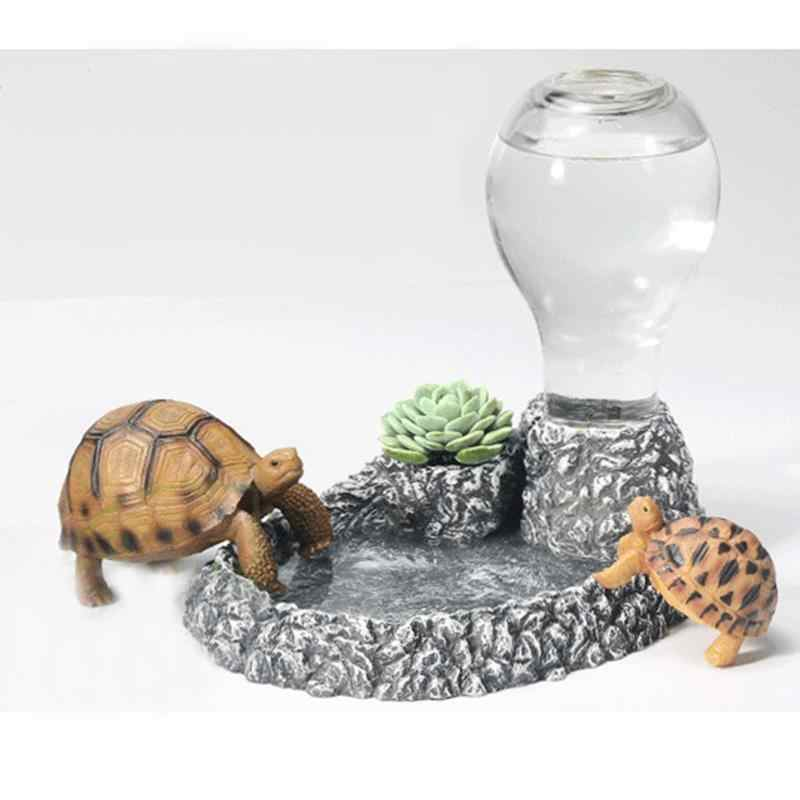 Игры и развлечения для черепах