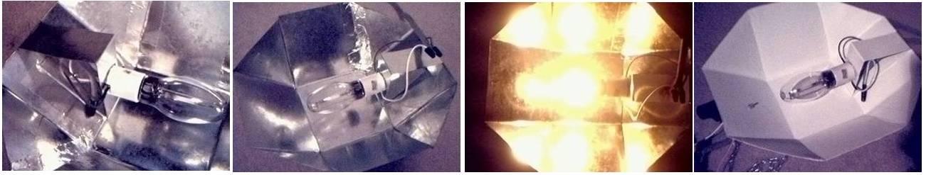 Как сделать террариум в лампочке: пошаговая инструкция, инструменты