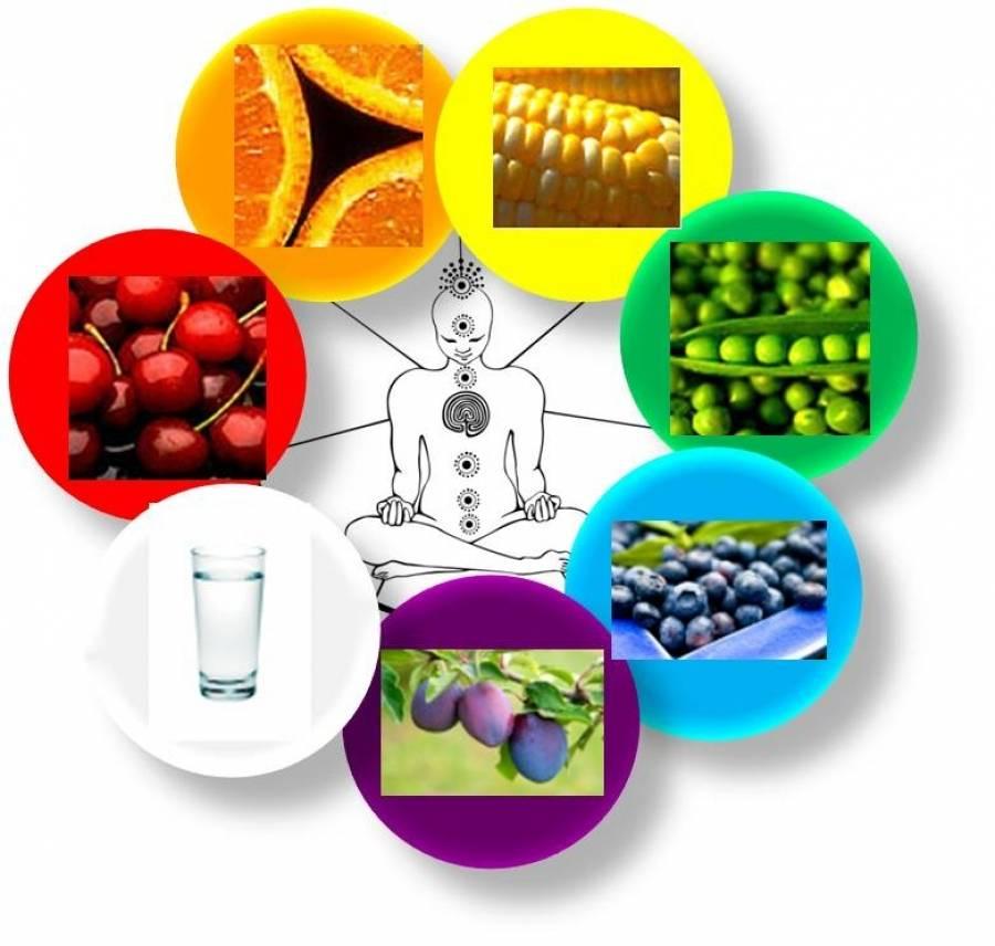 Люди и черепахи: использование в пищу, для лекарств, как учебные пособия и украшения