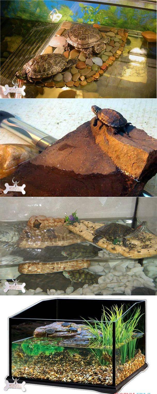 Как сделать аквариум для красноухой черепахи своими руками