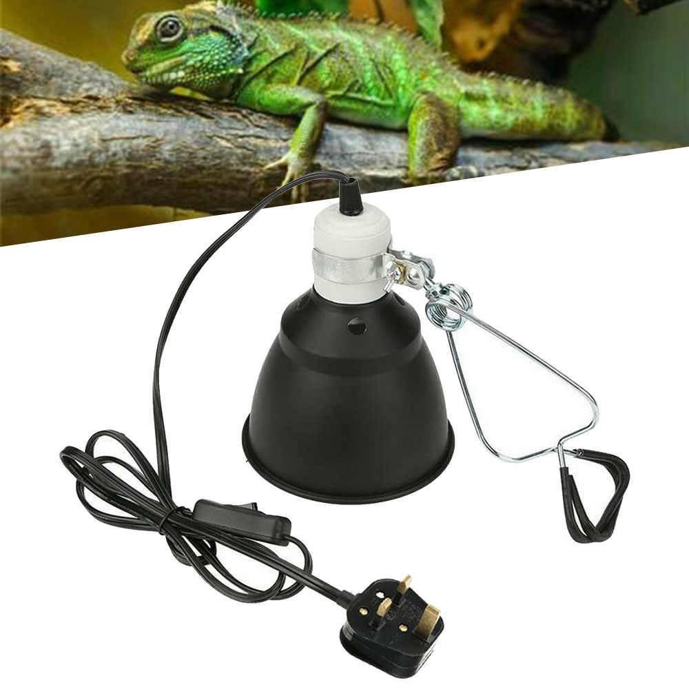 Обогреваем террариум для черепах с помощью ультрафиолетовой лампы