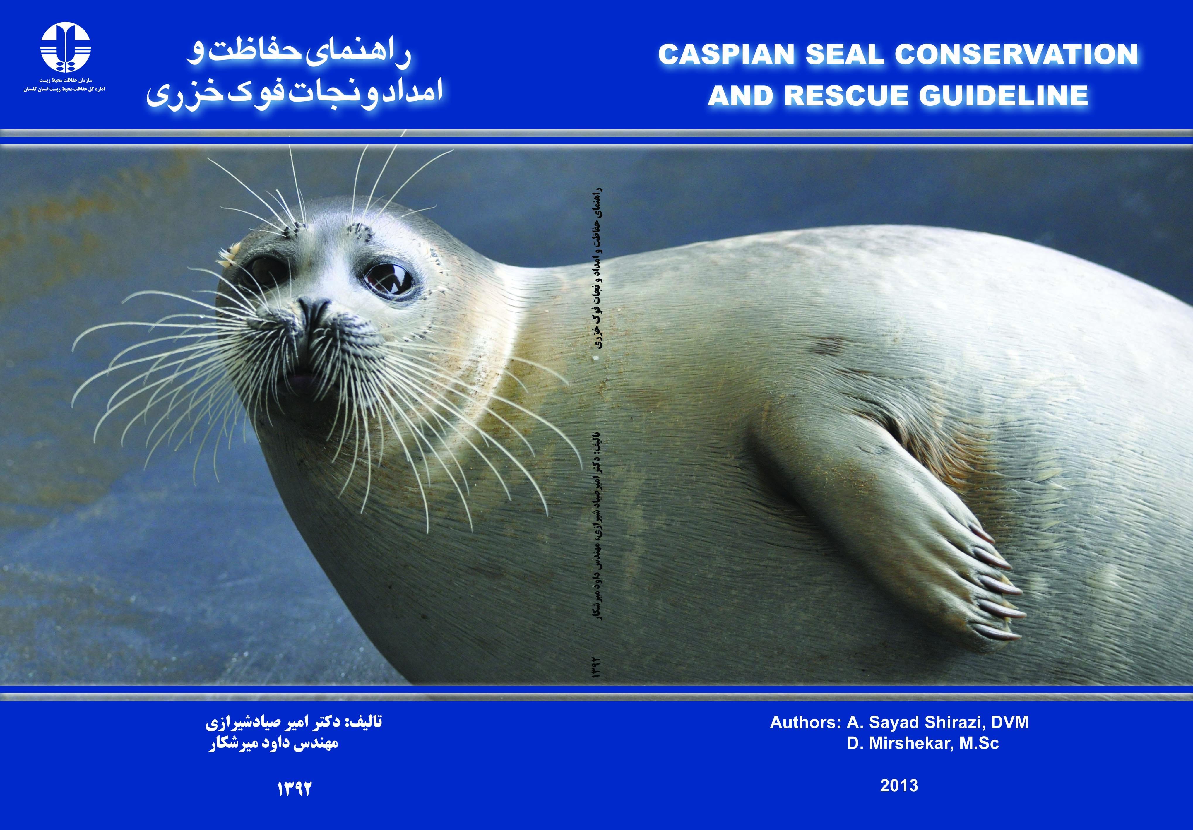 Каспийский тюлень: описание, среда обитания, размножение
