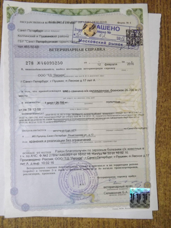 Ветеринарный паспорт. оформление ветпаспорта в москве