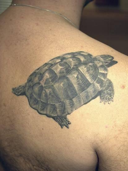 Татуировка черепаха – значение, фото