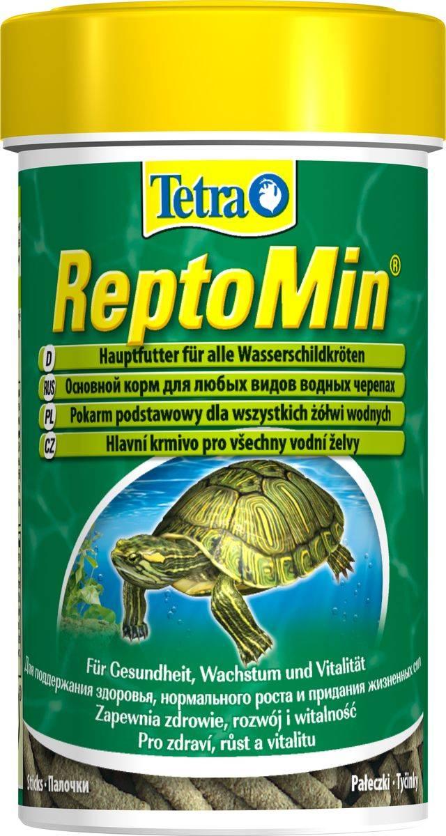 Корм для черепахи. чем кормить черепаху в домашних условиях