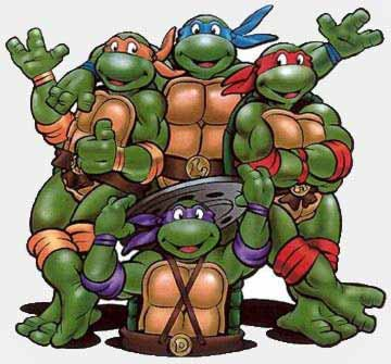 Как назвать черепаху-девочку или мальчика: лучшие имена и клички для питомцев