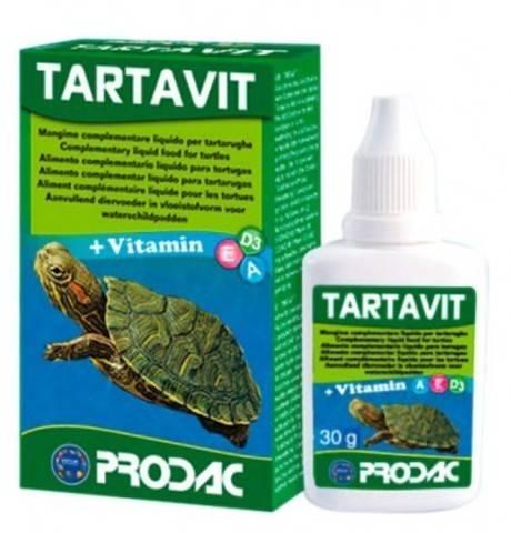 Какой террариум лучше выбрать для красноухих черепах? общие советы