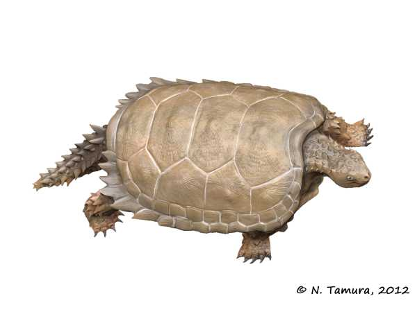 Proganochelys — wikipedia republished // wiki 2