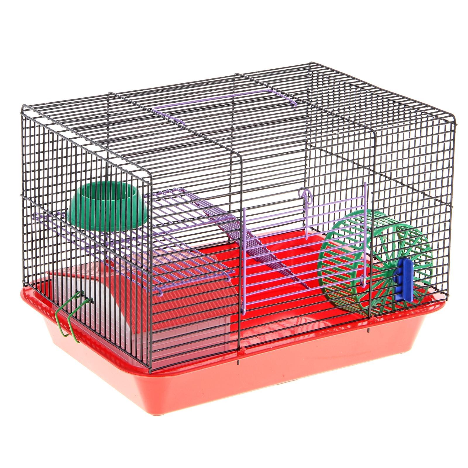 Как выбрать клетку для хомяка?