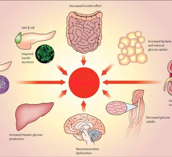 Что такое гипервитаминоз витамина а?