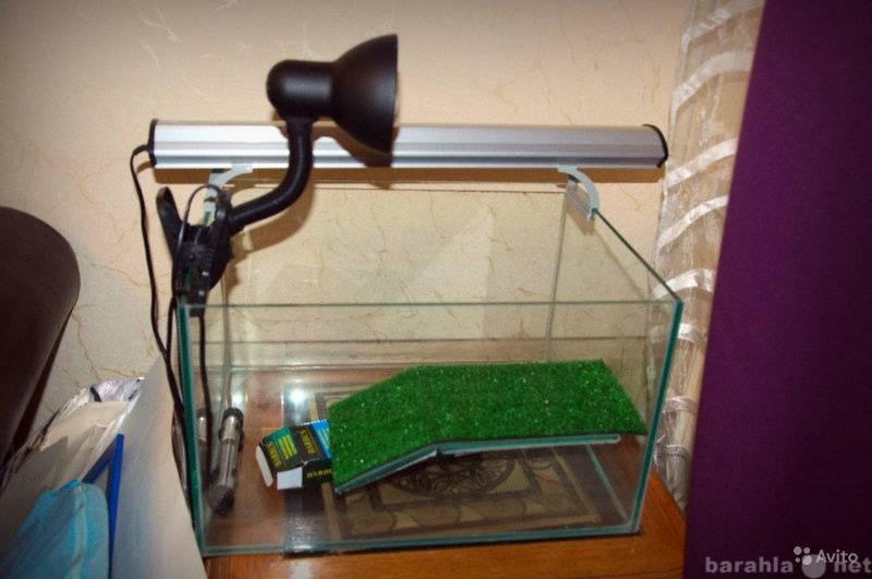 Особенности инфракрасной лампы для обогрева