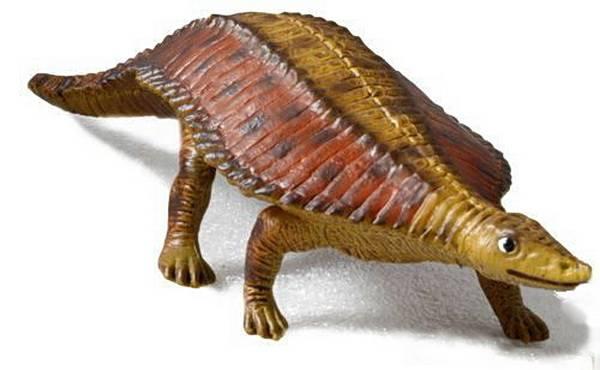 Черепахи с галапагосских островов - origins.org.ua