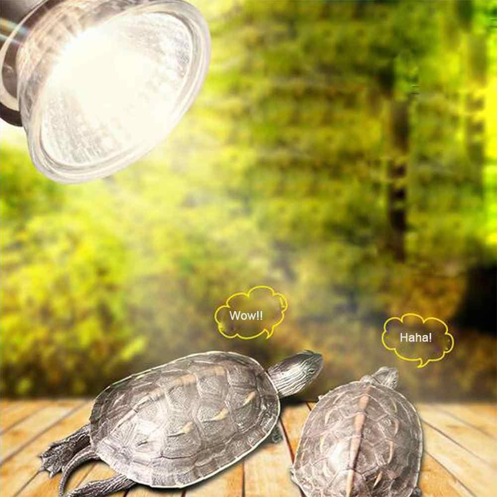Особенности, виды и выбор инфракрасной лампы (ик-лампы) для обогрева