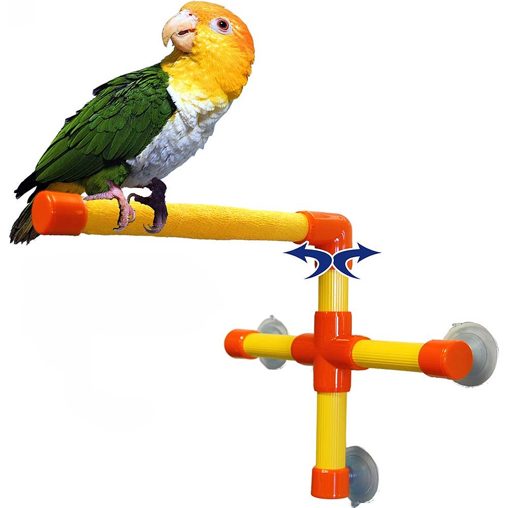 Какие жердочки лучше для волнистого попугая