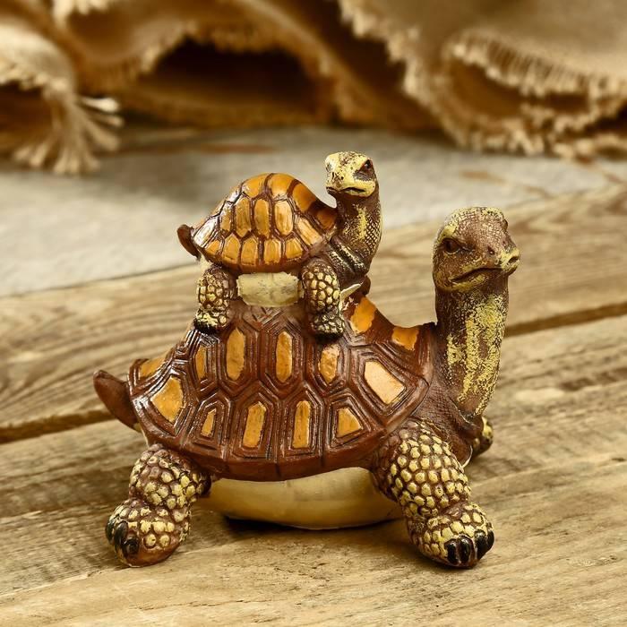Черепаха это земноводное или пресмыкающееся?
