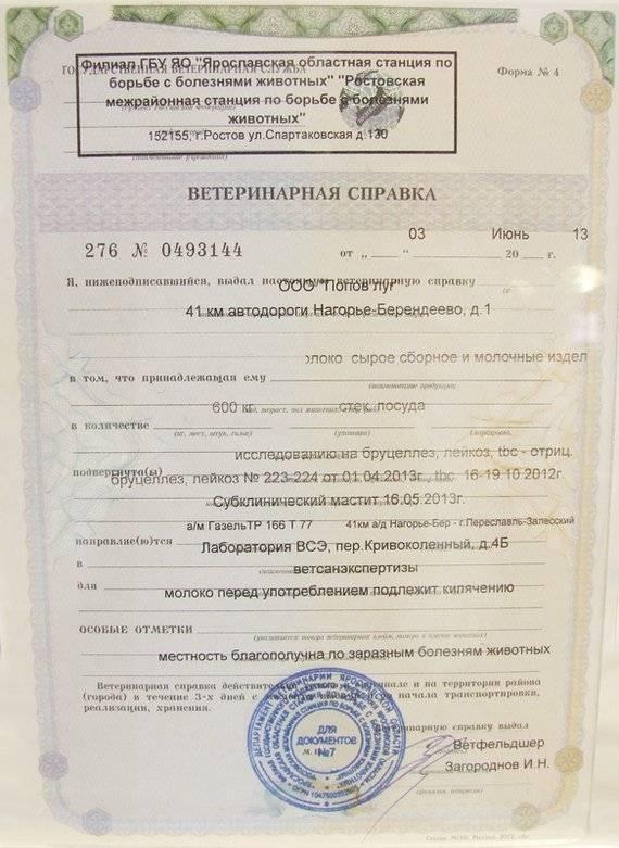 Регистрация экспортных грузов в журнале аргус.пвкп