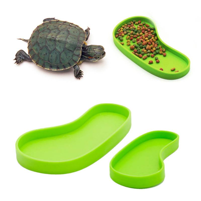 Транспортировка и переноска черепах