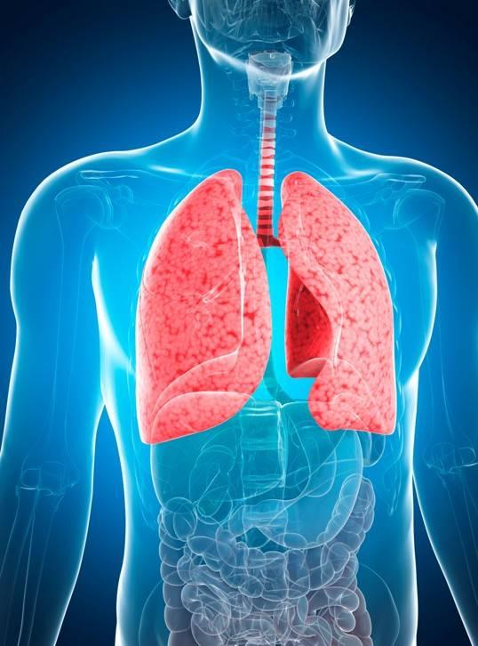 Пневмония. причины, симптомы, современная диагностика и эффективное лечение болезни. :: polismed.com