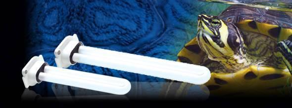 Ультрафиолетовые лампы для черепах: выбор, инструкция по эксплуатации. нужна ли черепахе ультрафиолетовая лампа