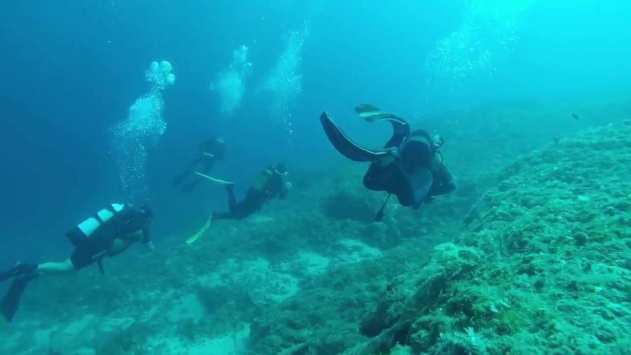 «остров черепах и ласкового моря» poseidon beach 3*, закинф, греция. отзыв туриста